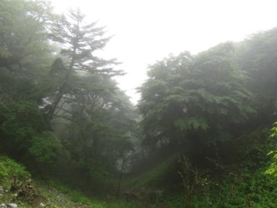 f:id:noronoyama:20120901110231j:image