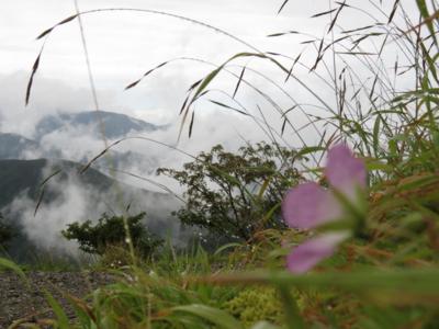 f:id:noronoyama:20120901112033j:image