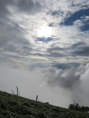 f:id:noronoyama:20120901163903j:image