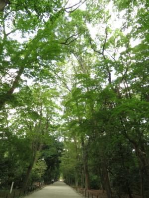 f:id:noronoyama:20120914100752j:image