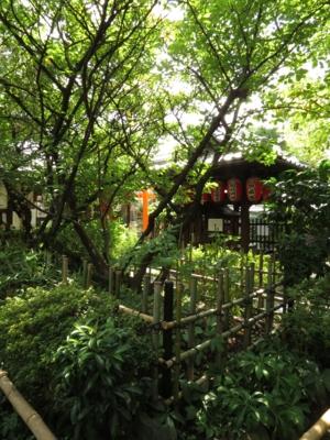 f:id:noronoyama:20120914112817j:image