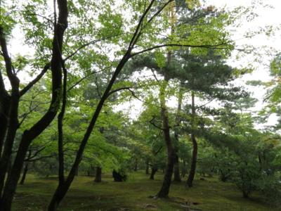 f:id:noronoyama:20120914145502j:image