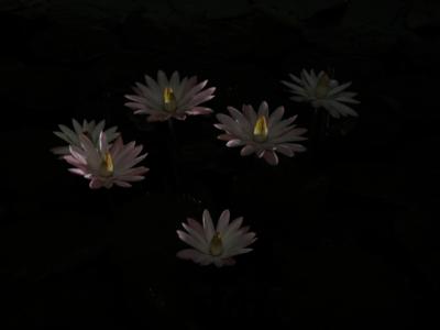 f:id:noronoyama:20120915200348j:image