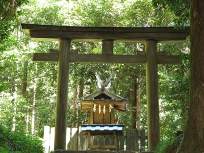 f:id:noronoyama:20120917113957j:image