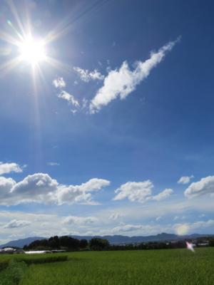 f:id:noronoyama:20120917133337j:image