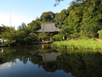 f:id:noronoyama:20120917155338j:image