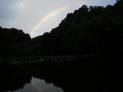 f:id:noronoyama:20120917170823j:image