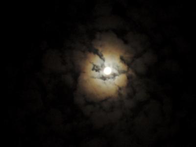 f:id:noronoyama:20120928231909j:image
