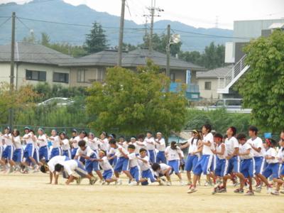 f:id:noronoyama:20120929144602j:image