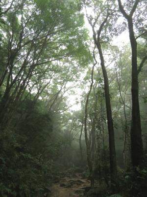 f:id:noronoyama:20120930083049j:image