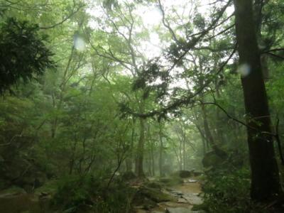 f:id:noronoyama:20120930095822j:image