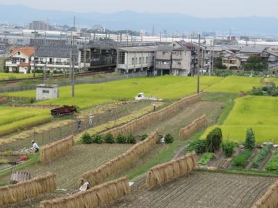 f:id:noronoyama:20121006115811j:image