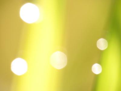 f:id:noronoyama:20121007081203j:image