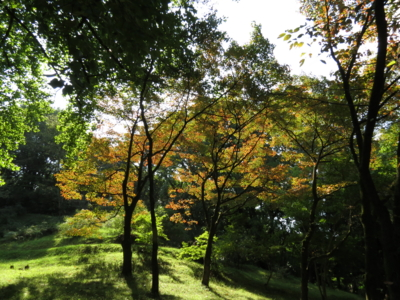 f:id:noronoyama:20121007101749j:image
