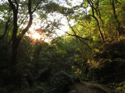 f:id:noronoyama:20121007165339j:image