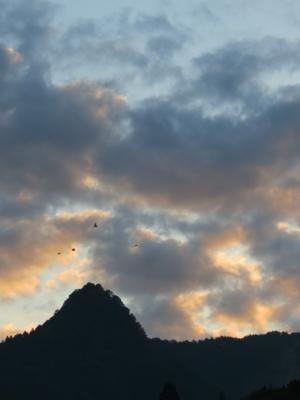 f:id:noronoyama:20121020062859j:image