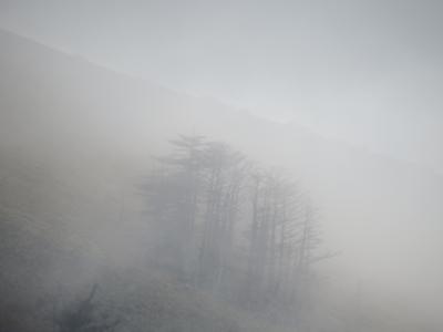 f:id:noronoyama:20121020155614j:image