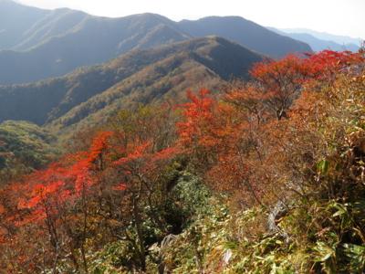 f:id:noronoyama:20121021081437j:image