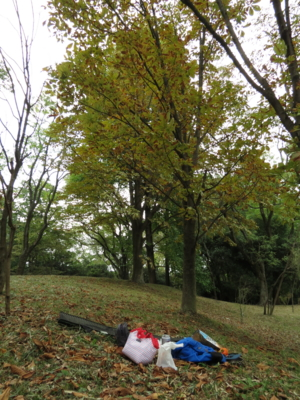 f:id:noronoyama:20121027145239j:image