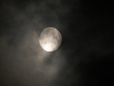 f:id:noronoyama:20121027210111j:image