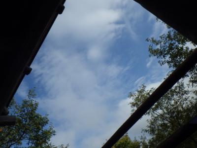 f:id:noronoyama:20121028144507j:image