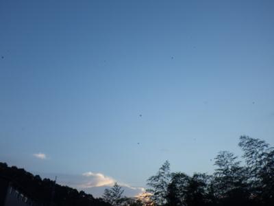 f:id:noronoyama:20121028165439j:image