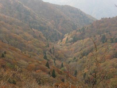 f:id:noronoyama:20121103090948j:image