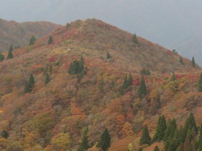 f:id:noronoyama:20121103091339j:image