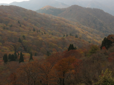 f:id:noronoyama:20121103092647j:image