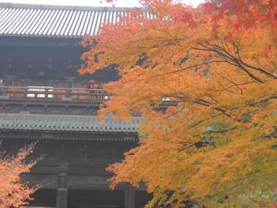 f:id:noronoyama:20121116093006j:image