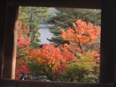 f:id:noronoyama:20121116093315j:image