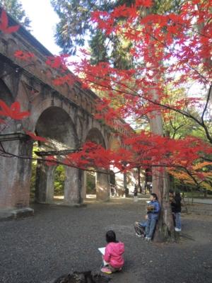 f:id:noronoyama:20121116095435j:image