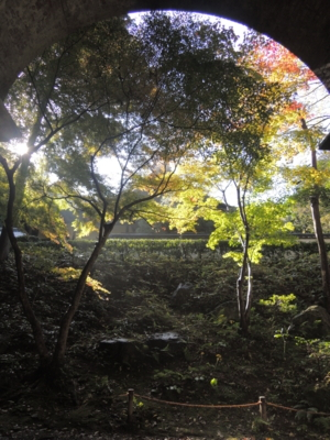 f:id:noronoyama:20121116095522j:image