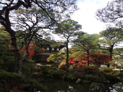 f:id:noronoyama:20121116112440j:image