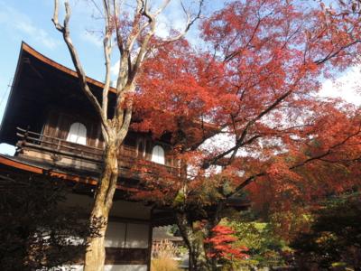 f:id:noronoyama:20121116114408j:image