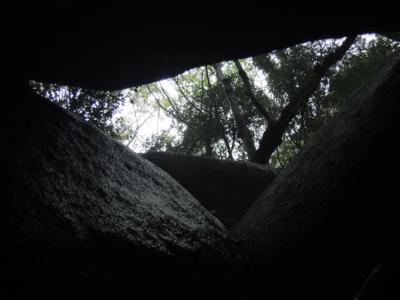 f:id:noronoyama:20121117140319j:image