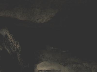 f:id:noronoyama:20121117140349j:image