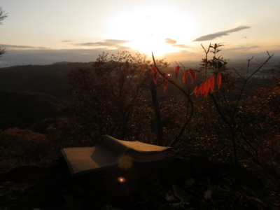 f:id:noronoyama:20121124161634j:image