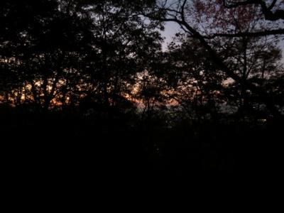 f:id:noronoyama:20121124171021j:image