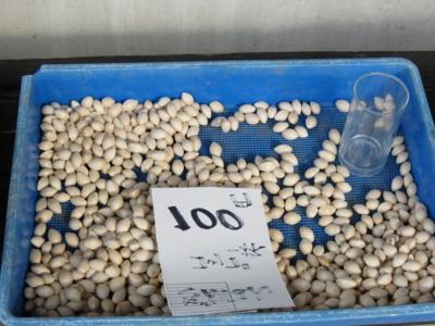 f:id:noronoyama:20121201120918j:image