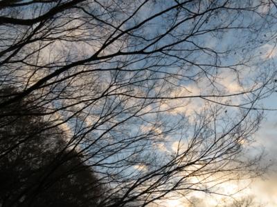 f:id:noronoyama:20121224162137j:image