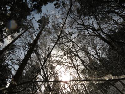 f:id:noronoyama:20130223131424j:image
