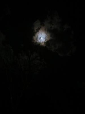 f:id:noronoyama:20130223231938j:image