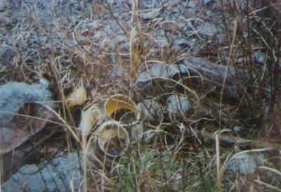 f:id:noronoyama:20130523001341j:image
