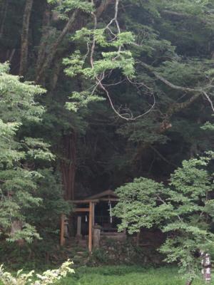 f:id:noronoyama:20130713063956j:image