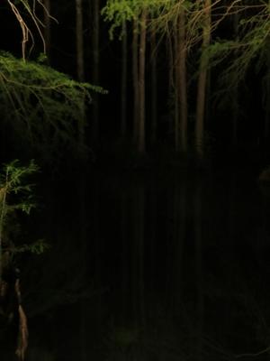 f:id:noronoyama:20130804202646j:image