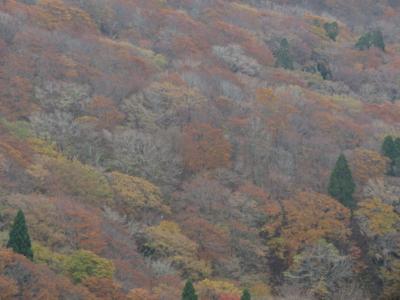 f:id:noronoyama:20131103112101j:image