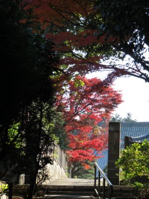 f:id:noronoyama:20131122103810j:image