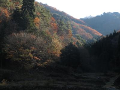 f:id:noronoyama:20131129090627j:image