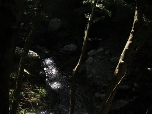 f:id:noronoyama:20140601154453j:image
